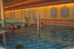 ovi-swimming